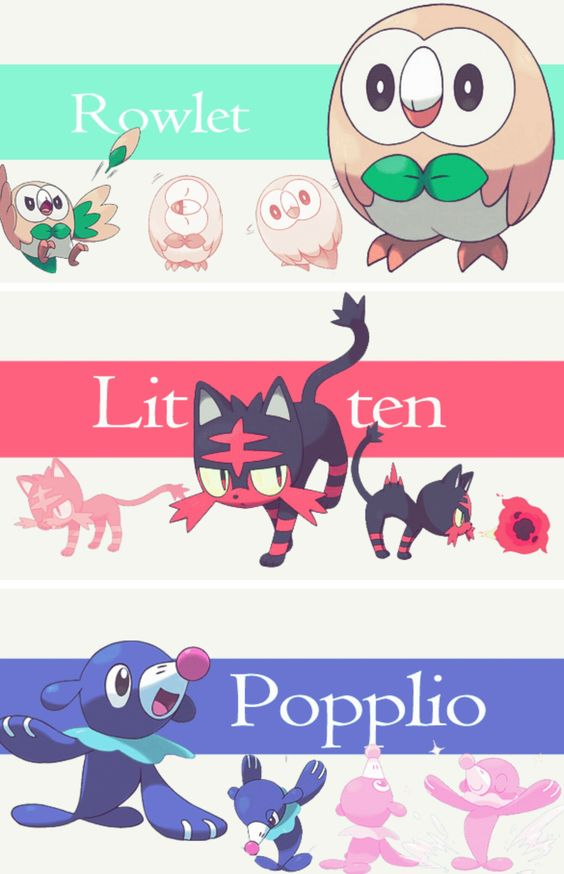 GUYYYYS LOOK AT THE NEW SUN AND MOON STARTERS!! THEY'RE SO ADORABLE!!