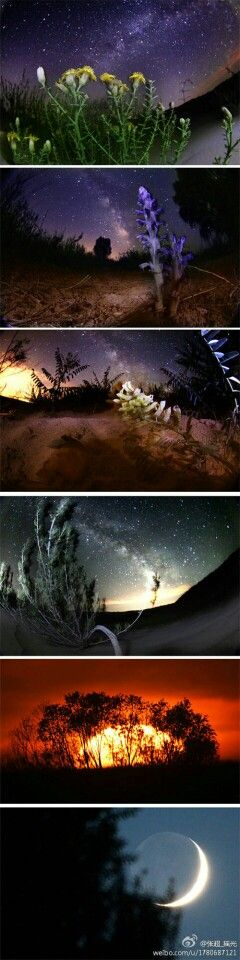 鄂尔多斯-达拉特旗沙漠中的星空,均为一次曝光完成 by 张超_摇光