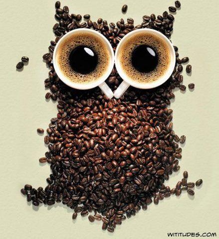 coffee-bean-owl.jpg (439×480)
