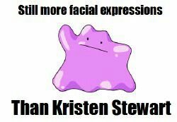 Yes ditto does
