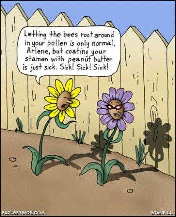 The Ultimate Revelation Of Funny Flower Jokes Funny Flower Jokes Http Bit Ly 2ngau97 Gardening Quotes Funny Garden Quotes Flower Garden