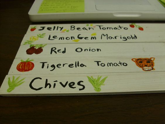 Fun painted plant labels!