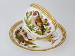 Rare-Antique-Royal-Worcester-Bird-Study-Jewelled-Tea-Cup-amp-Saucer-c1875-2