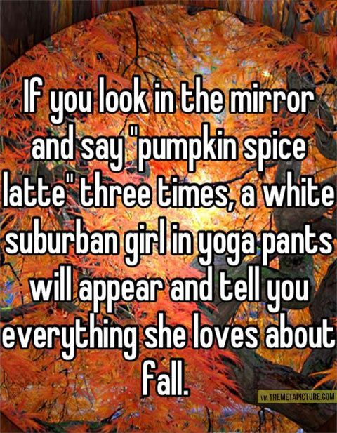 Image result for white girl fall meme