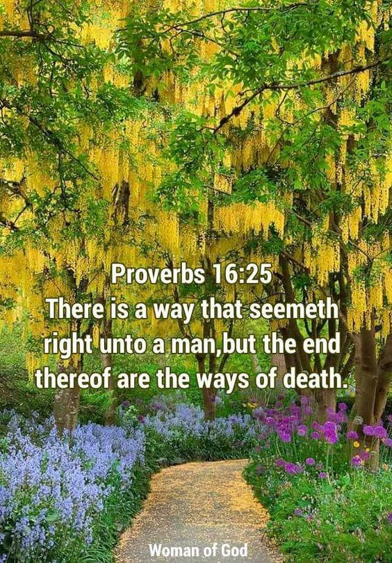 Proverbs 16:25: