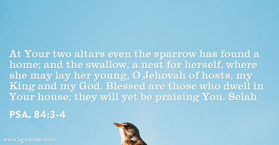 Psa. 84:3-4 At Your two altars even the sparrow has found a home; and the swallow, a nest for herself, where she may lay her young, O Jehovah of hosts, my King and my God. Blessed are those who dwell in Your house; they will yet be praising You. Selah Bible Verse quoted at www.agodman.com
