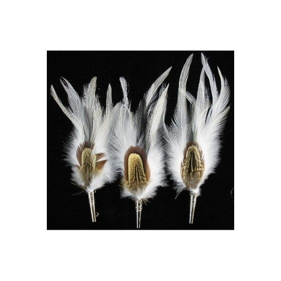 Buy White and brown feather Online | Germany | Ernst Licht, USA