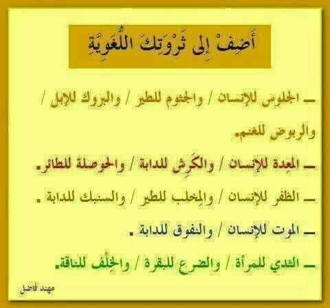 Pin By Rawaa Alshafeai On Wis Uncommon Words Learn Arabic Language Words Quotes