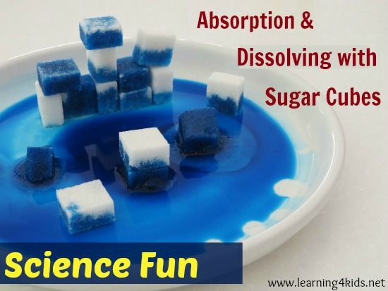 absorption and dissolving science activity for kids science experiments and cubes. Black Bedroom Furniture Sets. Home Design Ideas