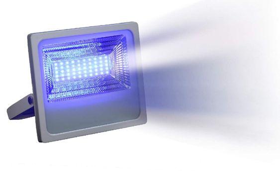 Pin On Lights Bulbs