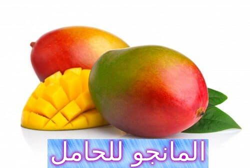 المانجو للحامل فوائده ومخاطره In 2020 Mango Fruit Food