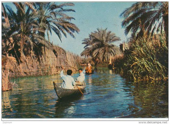 IRAQ  IRAK NASIRIYAH, THE MARSHES, BOYS IN BOAT, vintage old photo postcard