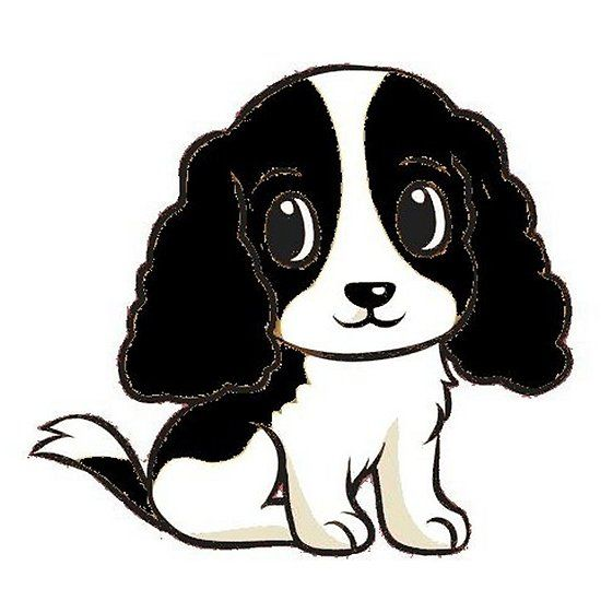 English Springer Spaniel Black And White Cartoon Springer Spaniel Black And White Cartoon Springer Spaniel Puppies