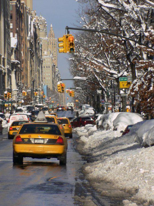 Inverno no Central Park: Big Apple, Big Yellow, York Big, York Taxi, New York City,  Taxicab, Central Park