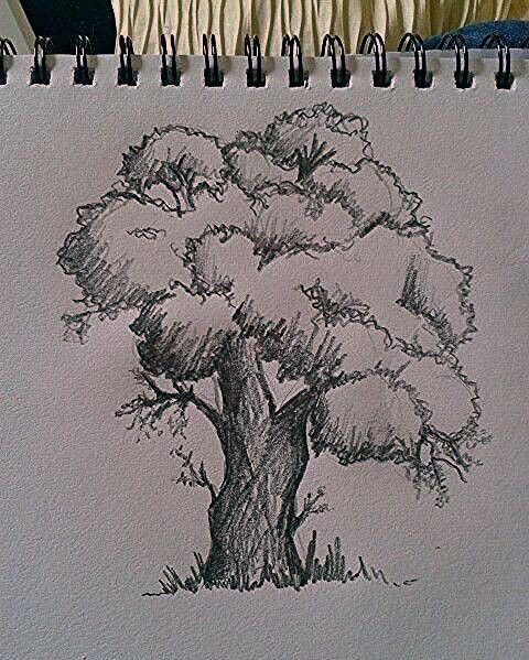 20 Ideen Zum Malen Und Zeichnen Von Baumen Baumen Ideen Malen
