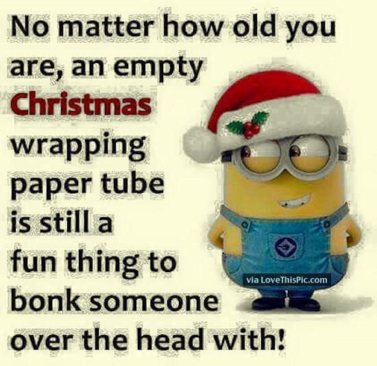 Funny Minion Quote About Christmas: