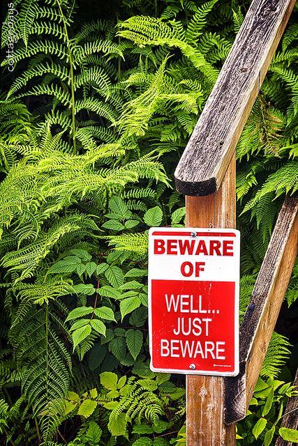 """beware of"" sign at Tenakee Springs, Alaska, by Cottage Days via Flickr:. http://www.flickr.com/photos/cottagedays/8552164899/"