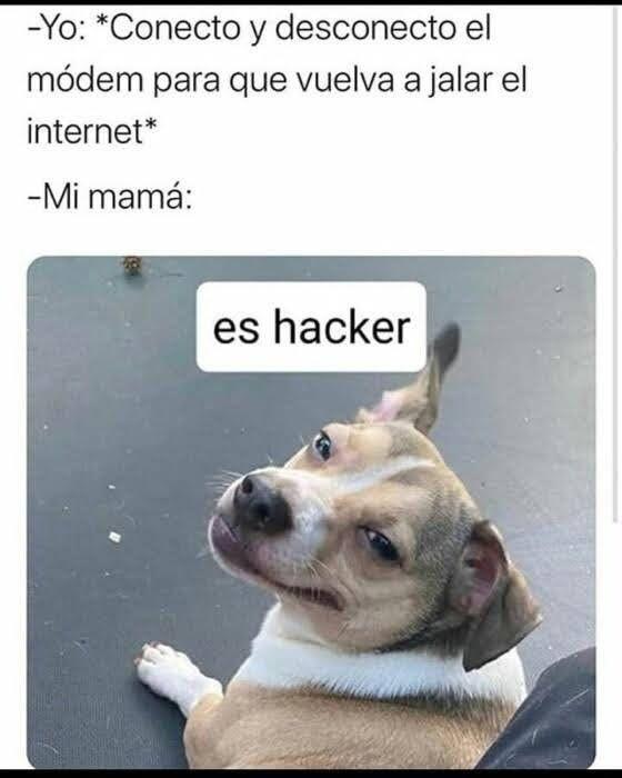 Pin De Tifanny Jailenne En Memes V 3 En 2021 Memes Memes Comicos Memes Divertidos