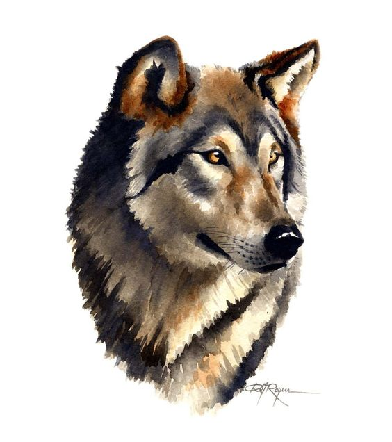 WOLF PORTRAIT Watercolor Painting Art Print Signed by k9artgallery