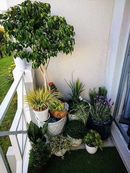 15 Brilliant Small Balcony Garden Ideas Will Inspiring You Thegardengranny Small Balcony Garden Backyard Garden Landscape Backyard Garden Diy