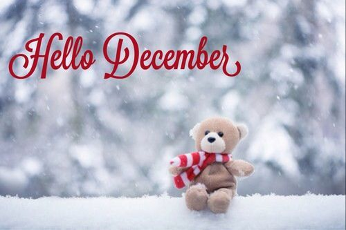 Hello December Quotes With Beautiful Quotesgram Teddybearandothercutestuffs Good Morning Wallpaper Hello December Good Night Wallpaper Beautiful hello december wallpaper for