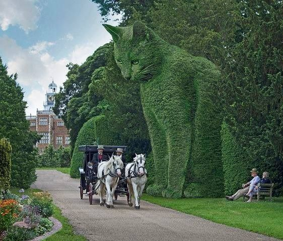 Garden Designs Ideas 2018 : Hatfield House Topiary garden