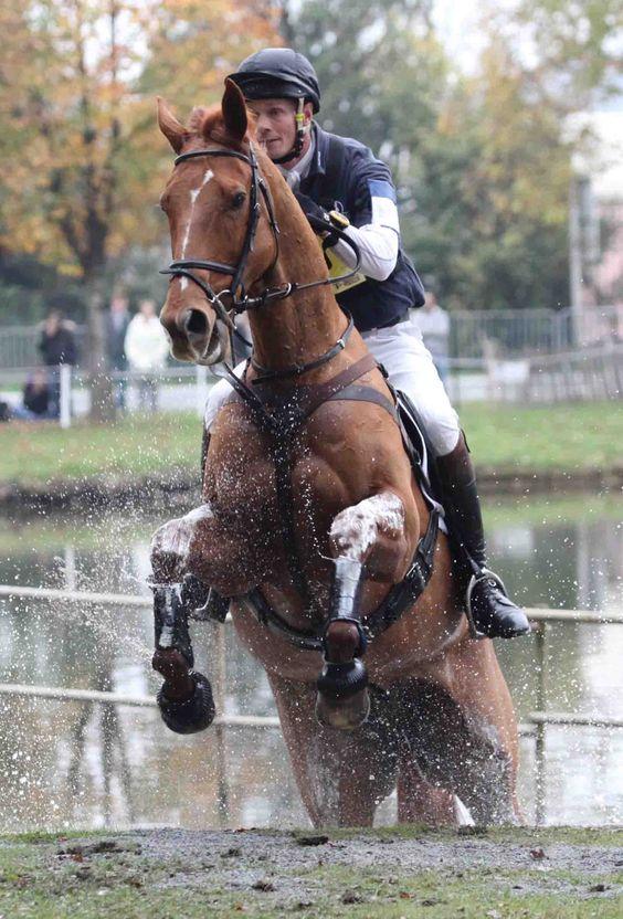 Water jump Eventing William Fox Pitt
