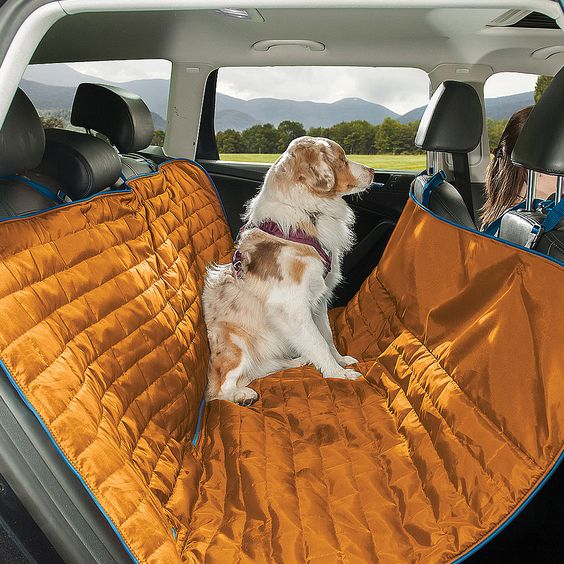 When riding in the backseat means balancing on all furry fours, this sporty dog hammock has got you covered. It serves triple duty, keeping your pup safe and off the floor, and the dirt that comes wit