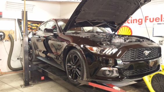 Woodbine Motorsports Puts 2015 Mustang EcoBoost on the Dyno