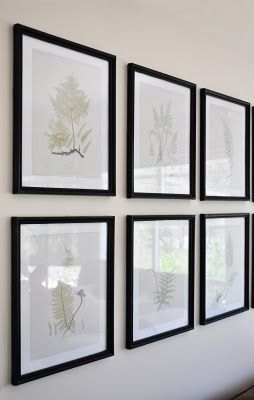 Free printable vintage fern study prints | The Painted Hive (for the formal living room?)