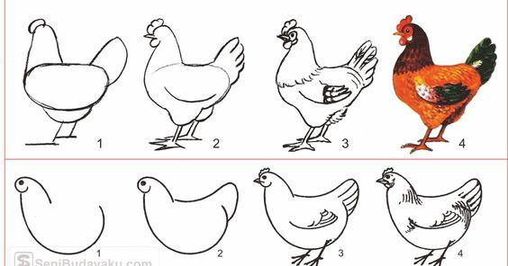 10 Cara Menggambar Ayam Dengan Mudah Seni Budayaku Cara Kriya Cara Mudah Menggambar Binatang Unggas Cara Menggambar Ayam Lukisan Gambar Lukisan Ayam Betina