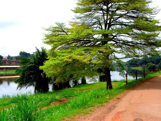 Lac municipal de Yaoundé Cameroun