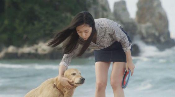 prettydog and girl - Google 検索