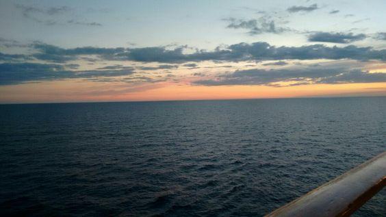 Em alto mar... 🐬🐟🐟🍃🏖🏝