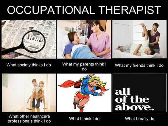 occupational therapy memes of what occupational therapists - occupational therapist job description