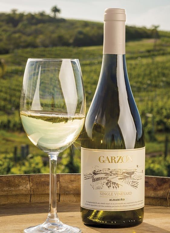 Albarino Single Vineyard 2018 Bodega Garzon Comprar Vino