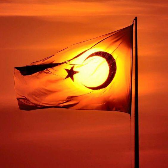 Turkey'm ⚓ByDiver969⚓