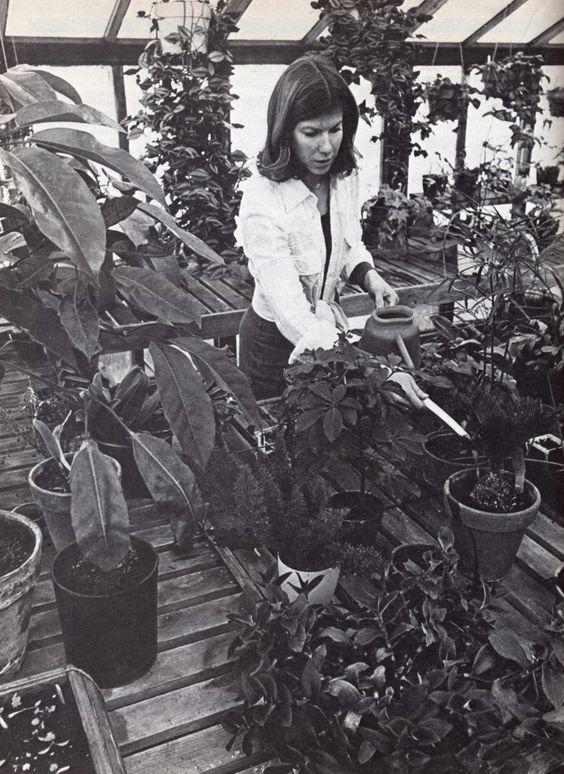 Greenhouse Gardening, Lane Publishing Co., 1976