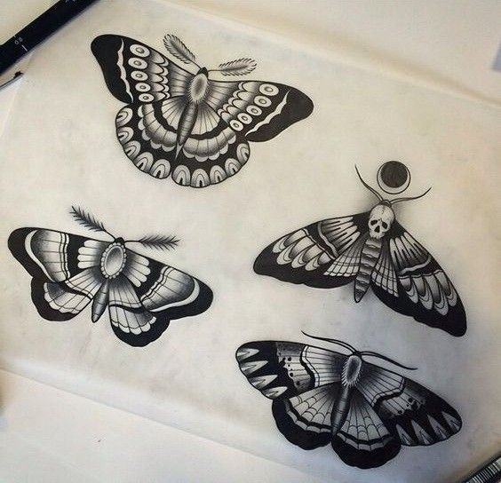 Black Ink Old School Moth Tattoo Design Variants Tattooimages Biz Blacktattoodesign Bla In 2020 Traditionelles Tattoo Design Motten Tattoo Insekten Tattoo