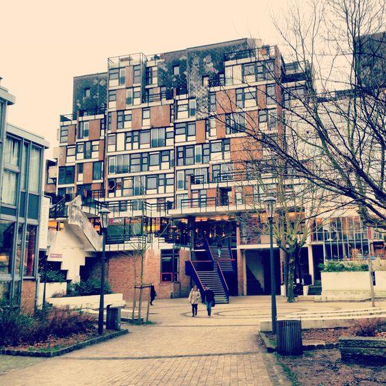 University Of Amsterdam Dorms: Pinterest • The World's Catalog Of Ideas