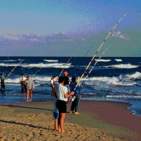 Pinterest the world s catalog of ideas for North carolina surf fishing license