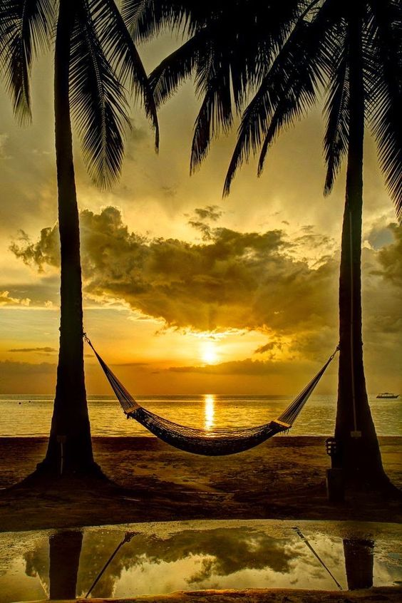 A Jamaican Sunset - Beautiful colors, a hammock..: