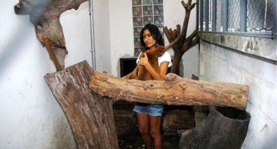 """#FREEYUYEE487 #EADT392  presa por defender los derechos de los animales frente a los """"malos"""""""