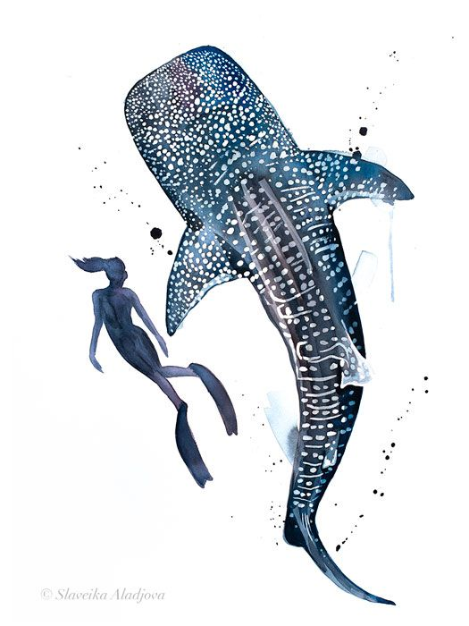 Freediver With Whale Shark Watercolor Painting Print By Slaveika