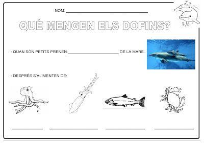 Els dofins (Proposta didàctica) : marzo 2013