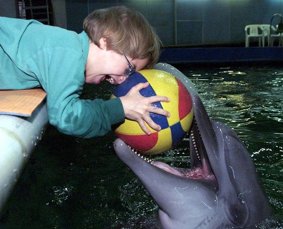 A 5-year-old boy plays with a dolphin at a special centre for people with disabilities in Moscow. The boy spends 30-minute long sessions with the dolphin to help his cerebral paralysis.