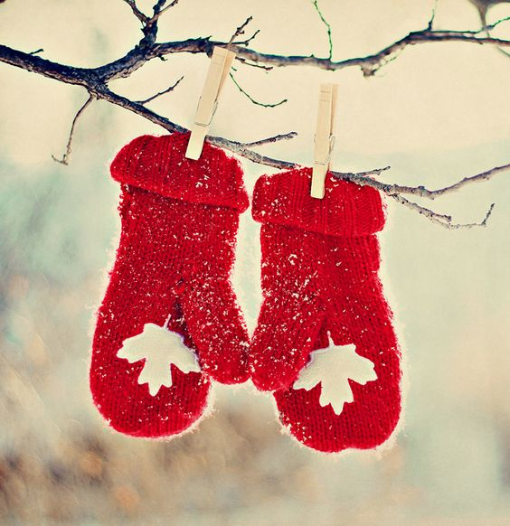 Image result for canadian red mittens