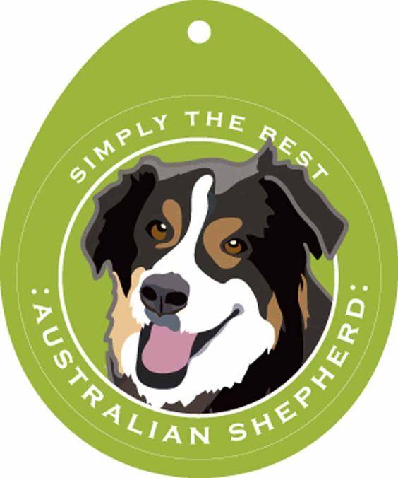 Australian Shepherd Sticker 4×4″ 1