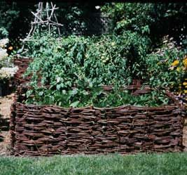 Making Willow and hazel wicker raised beds
