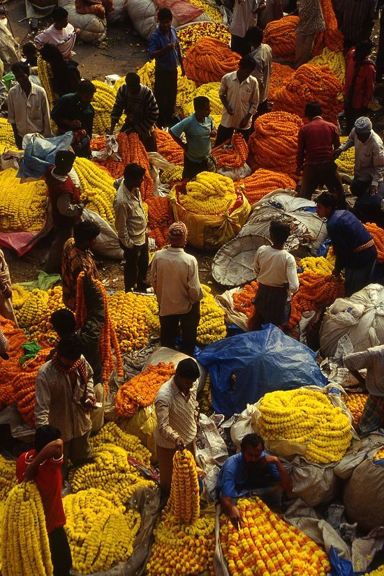 INDIA - Kolkata; A colourful view of the flower market